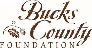 Bucks County Foundation small logo